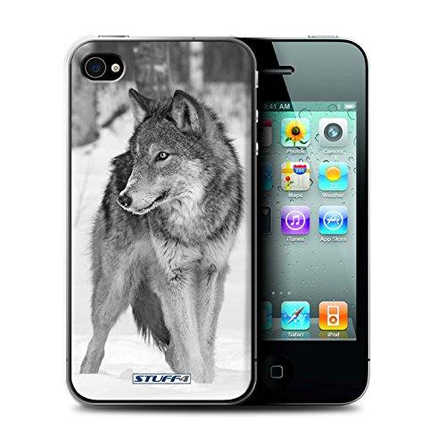 Stuff4 Hülle / Hülle für Apple iPhone 4/4S / Wolf Muster / Zoo-Tiere Kollektion Wolf
