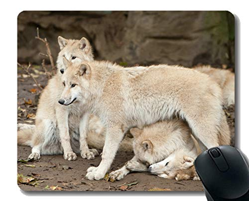 Gaming Mouse Pad Custom, Tier Wolf Fuzzy Rubber Large Mauspad Matte