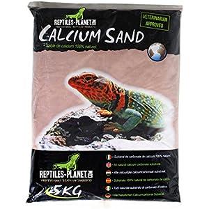 Reptiles Planet Katzenstreu Sand Calcium-Terrarium Kalzium Sand Kalahari rot 5kg