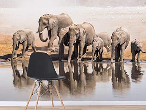 GBHL 3D Tropical Elephant Group River Fototapete Wandtattoo Wandbilder, 300x210 cm (118.1 by 82.7 in)