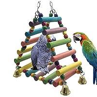 Ospet colorés en bois Échelle Bird jouet Perroquet Rainbow Bridge pour la formation
