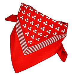 Red With White 3-Dot & Stripes Bandana Neckerchief by Ties Planet