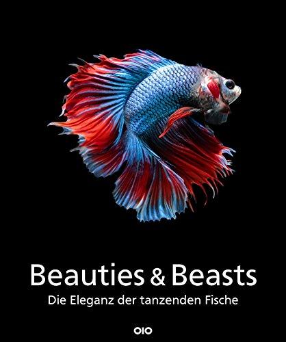 Beauties & Beasts: Unterwasser - Schönheiten wie aus einer anderen Welt Kamera Küsten Video