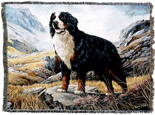 Begleiter Sessel (Pure Country 1935-T Bernese Mountain Dog Pet Blanket, Various Blended Colorways, 53 by 70-Inch by Pure Country)