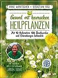 Gesund mit heimischen Heilpflanzen (Amazon.de)