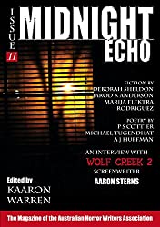 Midnight Echo Issue 11 (Midnight Echo magazine) (English Edition)