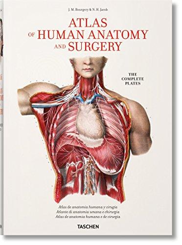 Bourgery. Atlas de anatomía humana y cirugía por Jean-Marie Le Minor