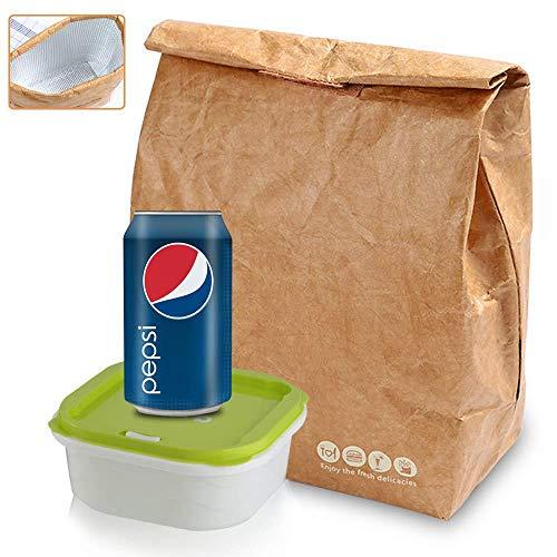Tyvek Lunch Bag, Wiederverwendbarer Öko-Lebensmittel-Lunch-Beutel | Biologisch Abbaubar | Waschbar | Retro Isolierte Gewachste Canvas Papier Picknick Snack Taschen (6L)
