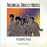 Tropical Disco Hustle volume 2 by v/a (2015-05-04)