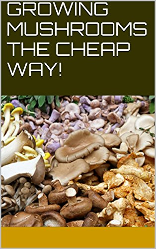 GROWING MUSHROOMS THE CHEAP WAY! (English Edition) - Oyster Mushroom Kits