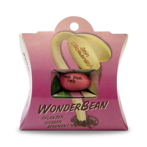 Muss Liebe Pflanzen (WonderBean - Hab Dich lieb)