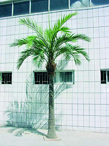 artplants Set 'Kunst Phönixpalme + Gratis UV Schutz Spray' – Künstliche Phönix Palme Steven, grün, 420 cm