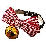 yeahnow Hundehalsband mit Schleife und Teddybären, für kleine Hunde