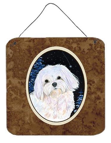 Starry Night Malteser Wand oder Tür Aufhängen Prints