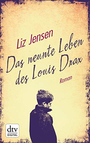 Louis Drax: Roman ()
