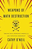 #9: Weapons of Math Destruction
