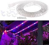 Lunartec LED Pflanzenlicht: LED-Pflanzen-Wachstums-Streifen, 150 rote & 30 blaue LEDs, 3m, kürzbar (Wachstumslampe)