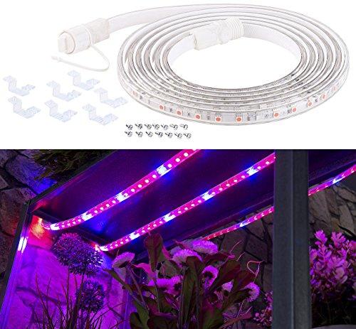 Lunartec Pflanzenlicht: LED-Pflanzen-Wachstums-Streifen, 150 rote & 30 blaue LEDs, 3m, kürzbar (Pflanzenlicht LED Streifen) - Garten Frische Kräuter