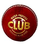 #7: PSE Red Pure Leather Cricket Ball