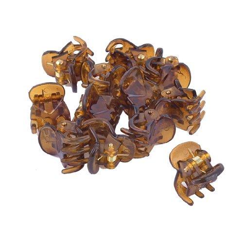 6 Pair Brown plastique transparent Hairclip cheveux Clamp Claw Clip pour dames