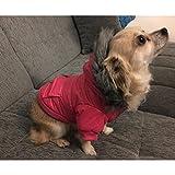 Namsan Pet Puppy Dog wasserfeste Kleidung und Winddichte Kapuzen Winter warme Kleidung Mantel Outwear -Pink -Kleine - 6