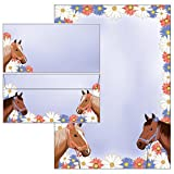 Pferde - Set - Briefpapier + Briefumschläge DIN lang ohne Fenster 51135+61135 - 25 Blatt Briefpapier + 25 Kuverts mit Mappe