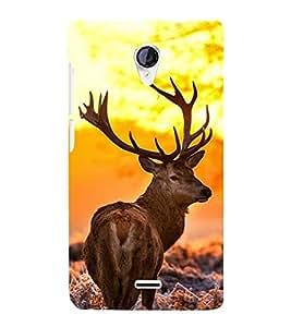 PrintVisa Innocent Animal 3D Hard Polycarbonate Designer Back Case Cover for Micromax Unite 2 A106 :: Micromax A106 Unite 2