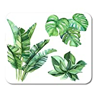 Deglogse Gaming Mouse Pad Mat, Succulents Monstera Palm Leaves and Other Perfect for Any Designs Phone Cases Bags and Floral Clip Mouse Pad,Desktop Computers Mouse Mats,