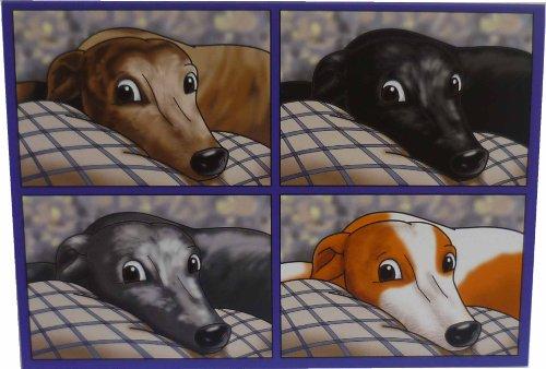 greyhound-head-costituisce-biglietti-con-buste-confezione-da-10-pezzi