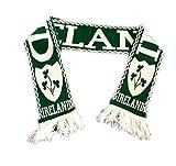St. Patricks Day Hut - Brillen, Schal - Irische Parade - modische Verkleidung - Irland Schal