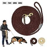 Wishdeal Hundeleine, strapazierfähig, Nylon, Lange Leinen, für mittelgroße und große Hunde, 3 m x 5 m, 10 m, 20 m, Rutschfest