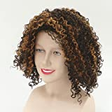 Enlarge toy image: Scary Spice Wig -  preschool activity for young kids