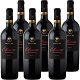 Primitivo di Manduria DOC Riserva 2013 Ettamiano | Cantina due Palme | Confezione 6 Bottiglie da 75 Cl | I Vini della Puglia | Idea Regalo
