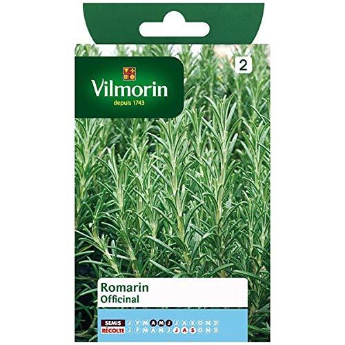 Vilmorin - Sachet graines Romarin officinal
