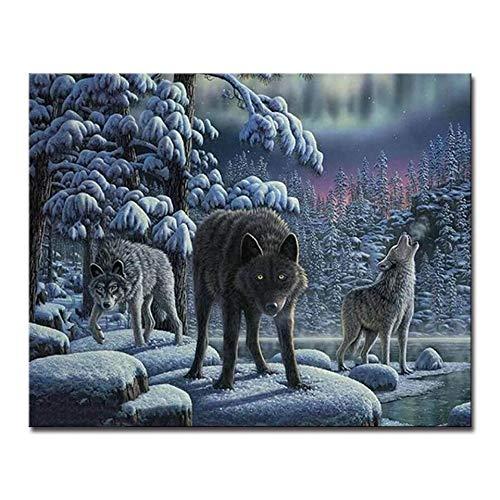 Gwykq Pintura De Bricolaje By Números Pintura A Mano Lobo Animales Pintura Al Óleo Cuadros Arte De La Pared Dibujo Atrapasueños Sobre Lienzo Sala De Estar Decoración,Sin Marco 40X50Cm