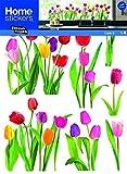 Unbekannt Sticker Fenster Tulpen neuen Bildern