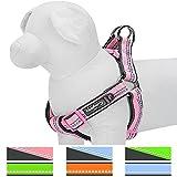 Blueberry Pet Step-In Geschirre 40-50cm Brust Baby-Pink 3M Reflektierendes Gepolstertes Hundegeschirr, Zugentlastend Klein, Passender Hundehalsband erhältlich separate