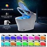 bqmqolove Capteur de lumière pour Toilettes de Nuit à LED Détecteur de lumière...
