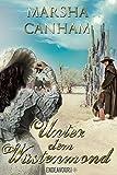 Unter dem Wüstenmond: Historischer Liebesroman
