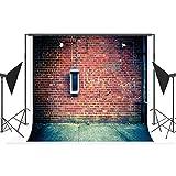 Time Memorial Hintergrundbild-Tapeten-Weinlese-Roter Backsteinmauer-Graffiti-Foto-Hintergrund, Anti-Falten Waschbar, Studioaufnahme-Foto-Requisiten, Familien-Persönliches Fotoaufnahme,10X10ft