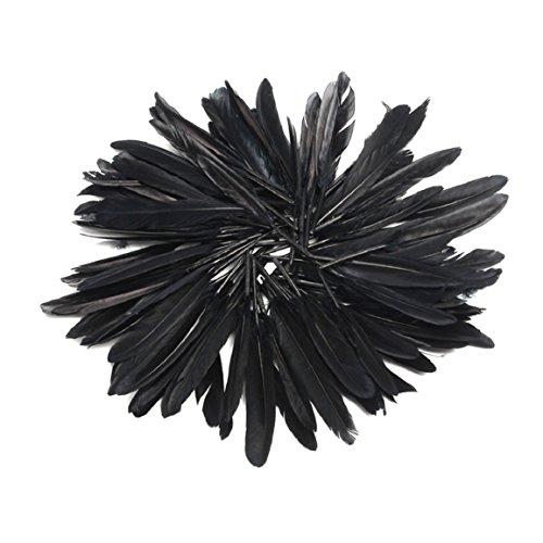 Culater® 100 piezas hermosas plumas del faisán de cuello 4-6 inch / 10-15 cm (Negro)