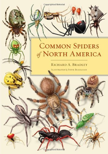 common-spiders-of-north-america-by-richard-a-bradley-2012-12-18