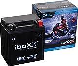 GEL51411, YB14L-A2 GEL, DIN51411 wartungsfreie Roller- u. Motorrad Batterie von Iboxx, LxBxH: 135x90x161mm