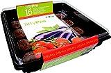 Jiffy Tomaten-Treibhaus mit 16 Quelltöpfen
