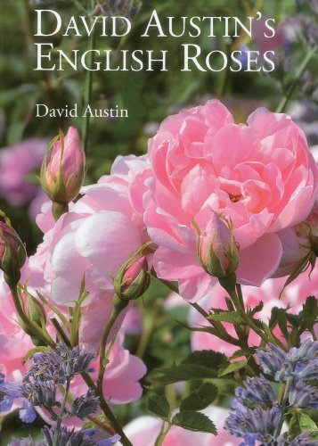 David Austins English Roses por David Austin
