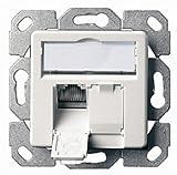 Telegärtner Datenanschlussdose Cat6A 2-fach 2x RJ45, AMJ45 8/8 UP/50, alpinweiß, J00020A0500