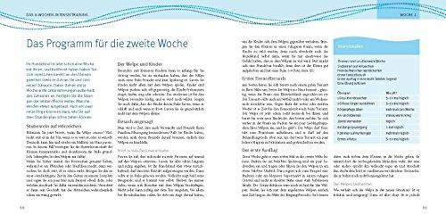 Welpen-Erziehung: Der 8-Wochen-Trainingsplan für Welpen. Plus Junghund-Training vom 5. bis 12. Monat (GU Tier Spezial) - 6