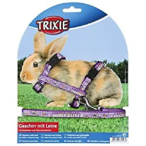Trixie Nylon Harness with Leash for Rabbit and Small Rodent, 25 - 44 cm x 10 mm