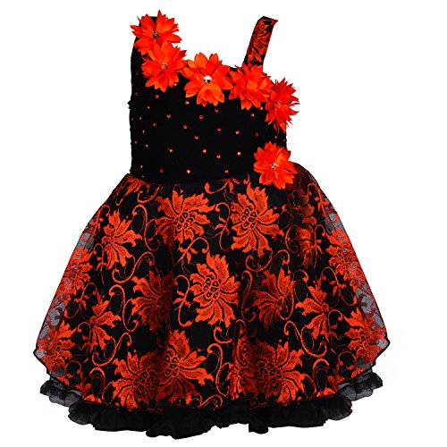 Wish Karo Baby Girls Party Wear Frock Dress DN fe1102trd-0-3 Mths