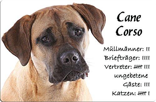 +++ CANE CORSO - Metall WARNSCHILD Schild Hundeschild Sign - COR 02 T4 -